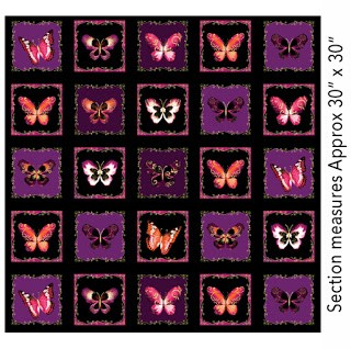 Butterfly jewel boxes berry, 5230